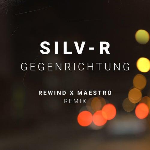 Gegenrichtung (Remix) de Silvr