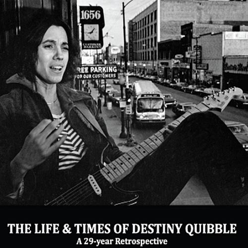 The Life and Times of Destiny Quibble by Cynthia Haring