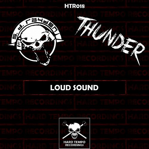 Loud Sound by Various Artists