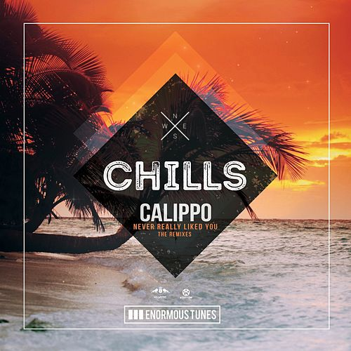 Never Really Liked You (The Remixes) von Calippo