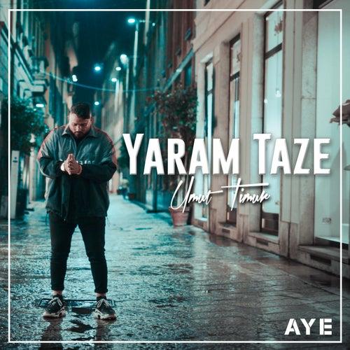 Yaram Taze von Umut Timur