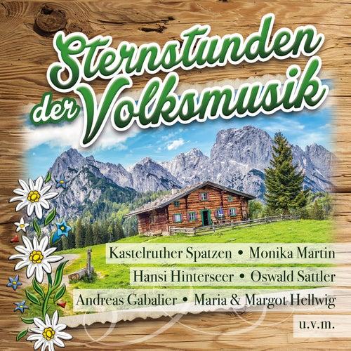 Sternstunden der Volksmusik von Various Artists
