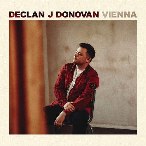 Vienna by Declan J Donovan