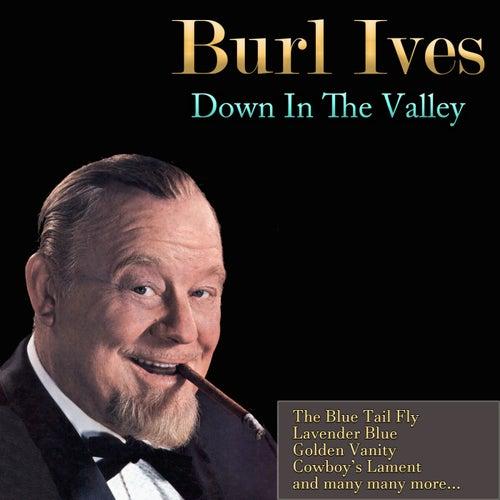 Do You Like Folk Music? von Burl Ives