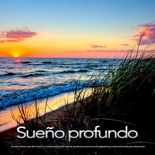 Sueño profundo: Sonidos de las olas del océano y música suave para dormir, ayuda para dormir profundamente y música tranquila para descansar de Musica Relajante