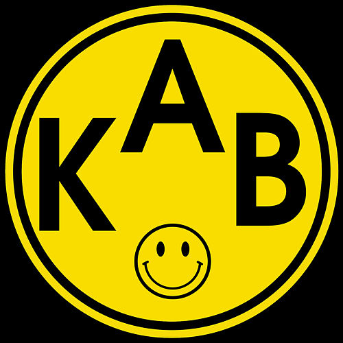(I Find Myself Surrounded by) The Lunatics of Acid House by Klaus Blatter