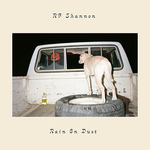 Don't Be Shy by R.F. Shannon
