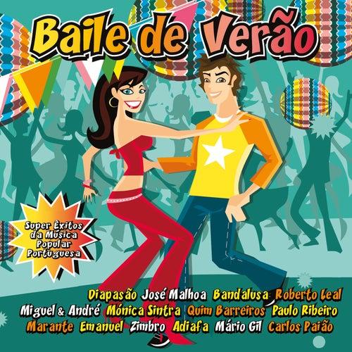 Baile de Verão von Various Artists