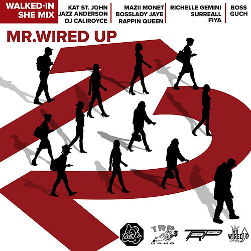 Walked in (She-Mix) by Mr. Wired Up