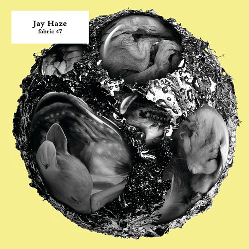 fabric 47: Jay Haze (DJ Mix) von Various Artists