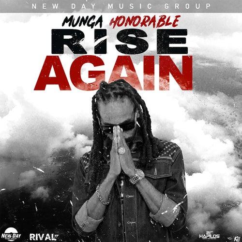 Rise Again de Munga