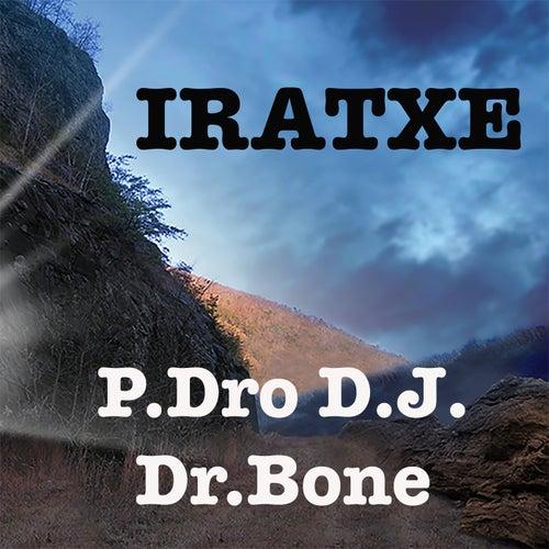 Iratxe by Dr. Bone