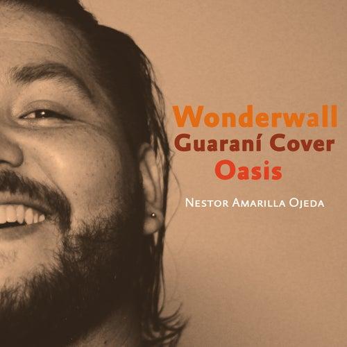 Wonderwall - Guarani Cover de Nestor Amarilla Ojeda