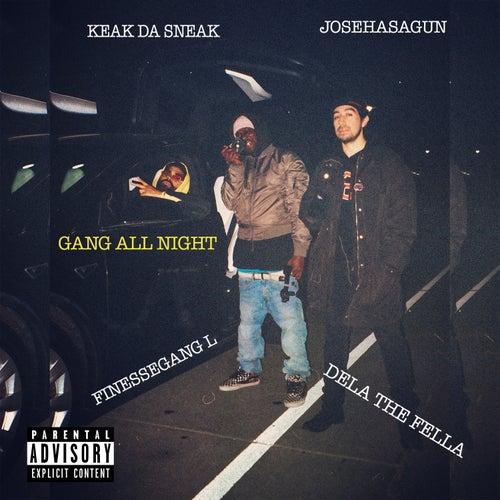 Gang All Night (feat. Keak Da Sneak, Josehasagun & FinesseGang L) by Dela the Fella