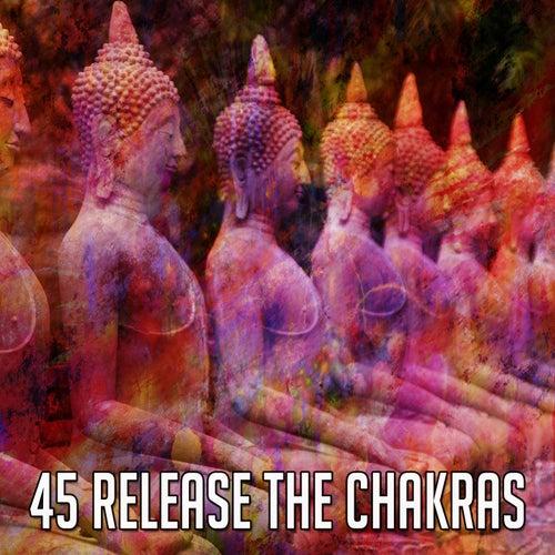 45 Release the Chakras de Musica Relajante