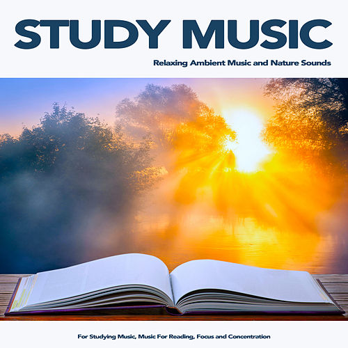 Study Music for Reading and Ambient Alpha Waves    by Study