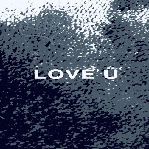 Love U by C0mpass