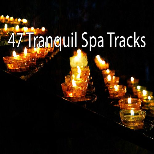 47 Tranquil Spa Tracks by Asian Traditional Music