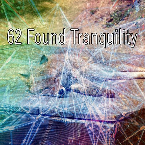 62 Found Tranquility de Smart Baby Lullaby