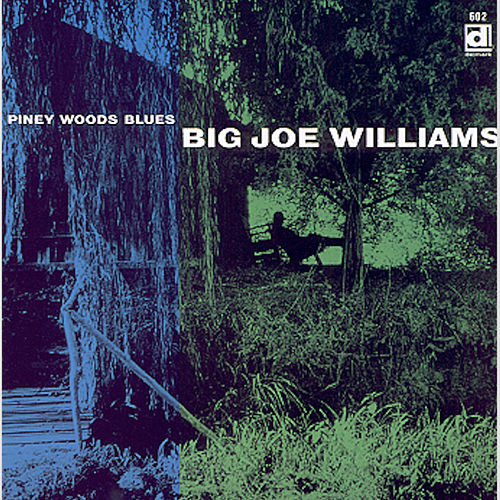 Piney Wood Blues by Big Joe Williams