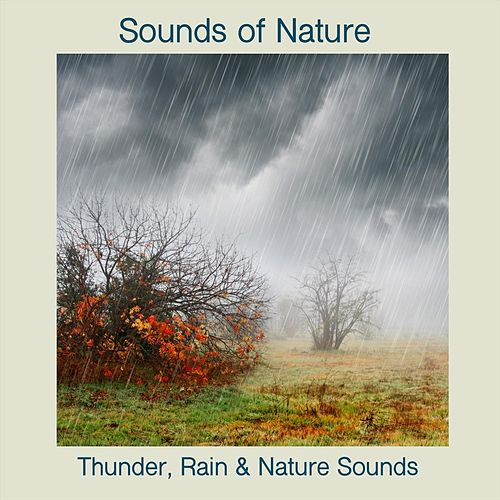 Rain, Thunder and Nature Sounds de Sounds Of Nature