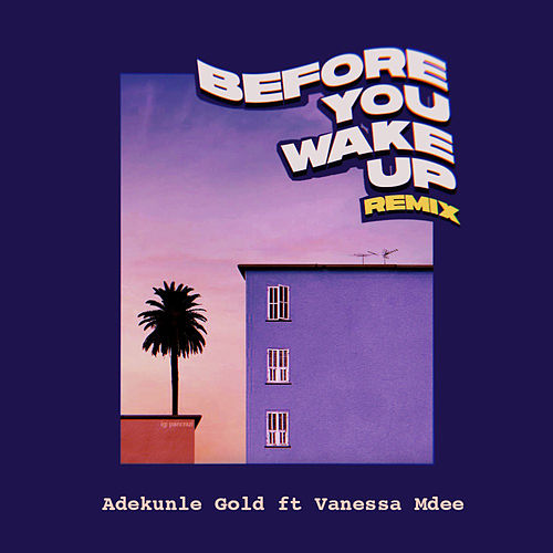 Before You Wake Up (Remix) [feat. Vanessa Mdee] de Adekunle Gold