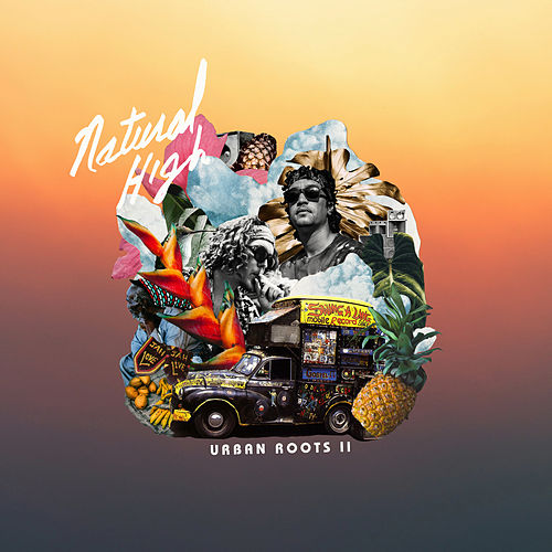 Urban Roots II by Natural High Music