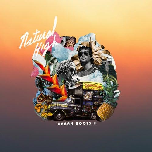 Urban Roots II de Natural High Music