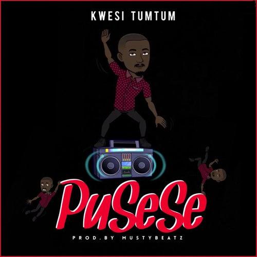 PuSeSe by Kwesi TumTum