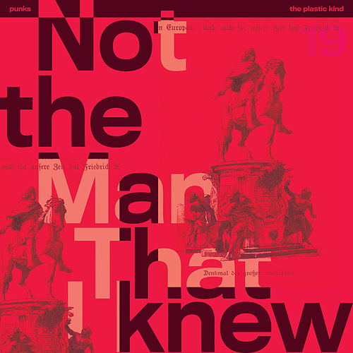 Not The Man That I Knew by The Punks