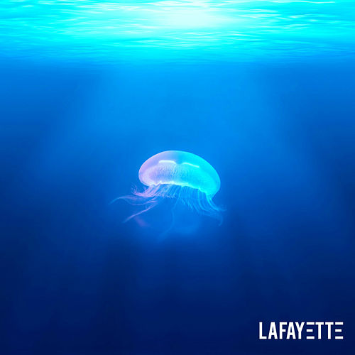 Haze de Lafayette