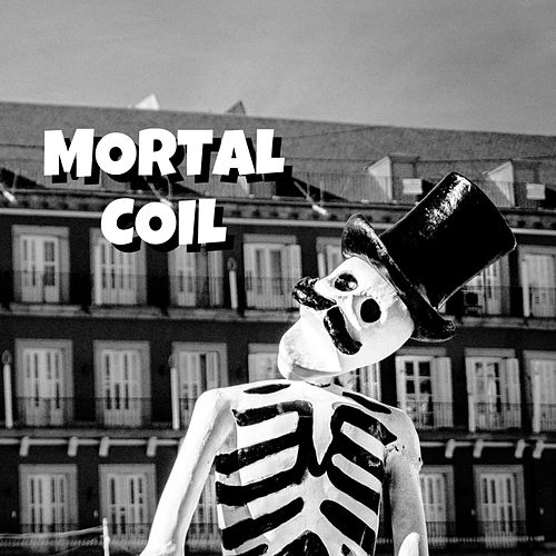 Mortal Coil by The Unknown Brothers