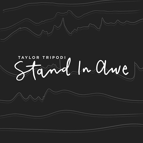 Stand in Awe by Taylor Tripodi