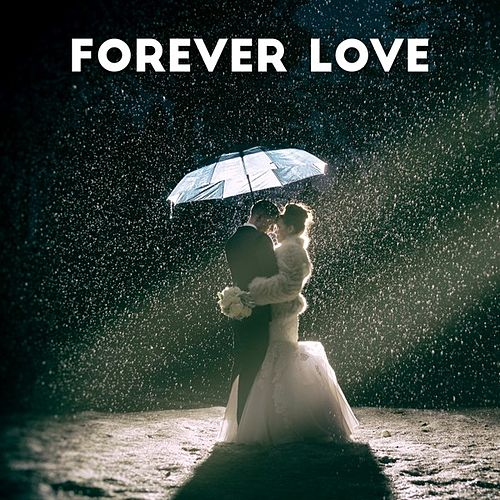 Forever Love di Various Artists
