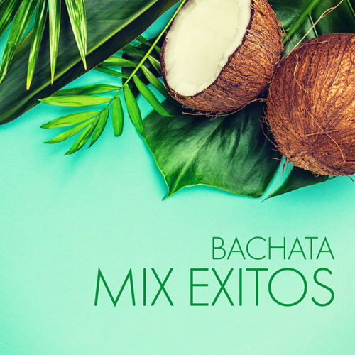 Bachata Mix Exitos von Various Artists