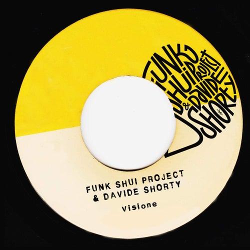 Visione di Funk Shui Project