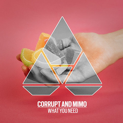 What You Need by Corrupt