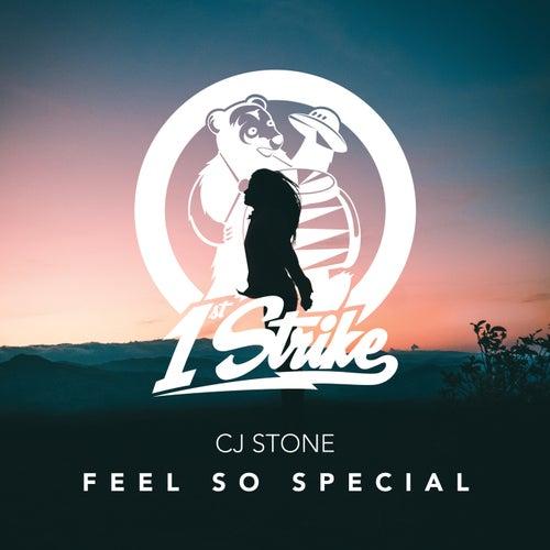 Feel So Special by CJ Stone