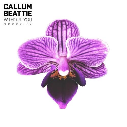 Without You (Acoustic Version) de Callum Beattie