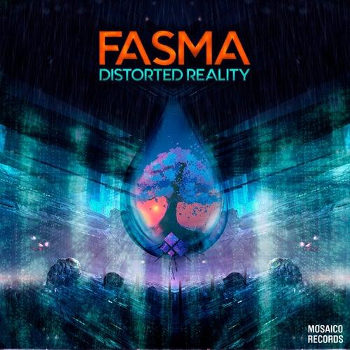 Distorted Reality di Fasma