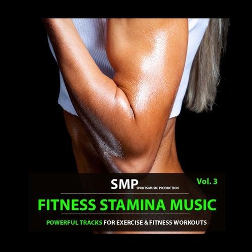 Fitness Stamina Music, Vol. 3 de Various Artists