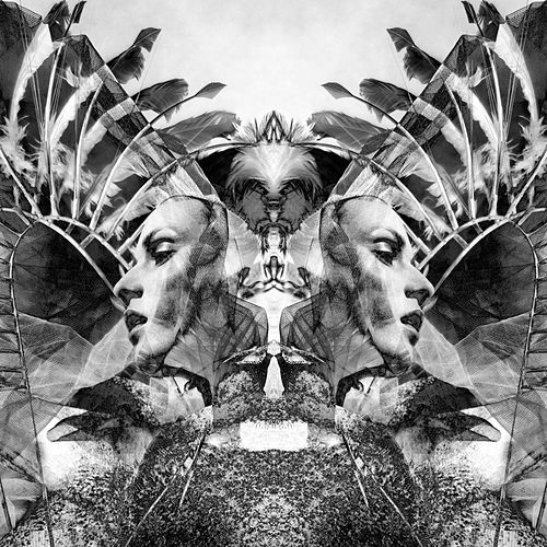 Natural Selection by UNKLE