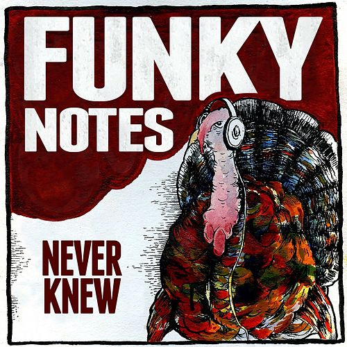 Never Knew by Funky Notes