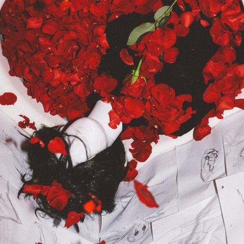 Lovesong von Lucy Daydream