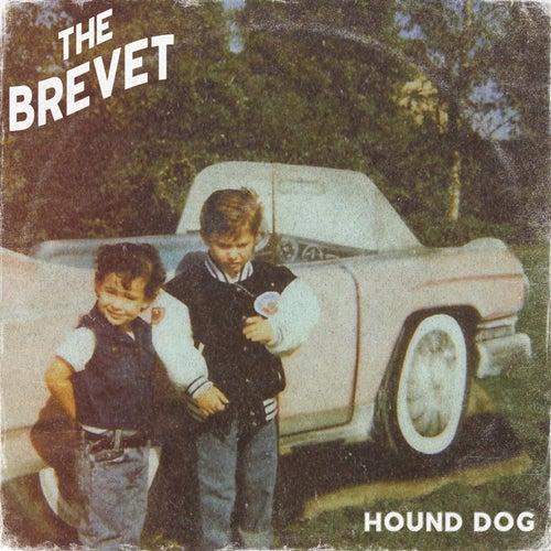 Hound Dog von The Brevet