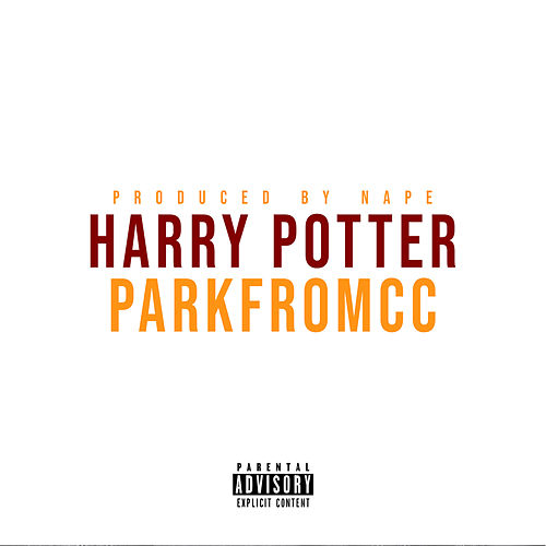 Harry Potter de ParkfromCC