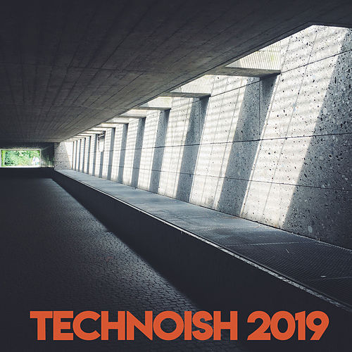 Technoish 2019 de Various Artists