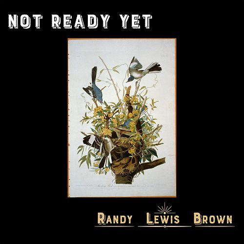 Not Ready Yet by Randy Lewis Brown