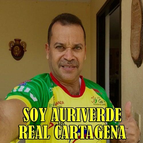 Real Cartagena Soy Auriverde de Karisma Celestial