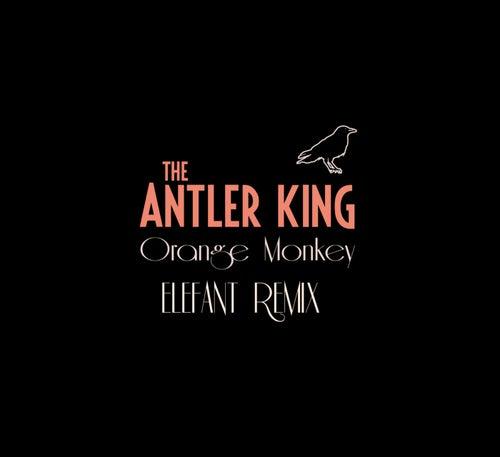 Orange Monkey (Elefant Remix) by The Antler King